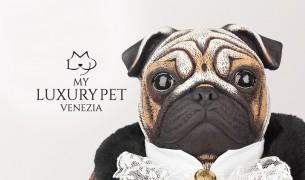 My Luxury pet