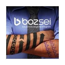 BozSEI
